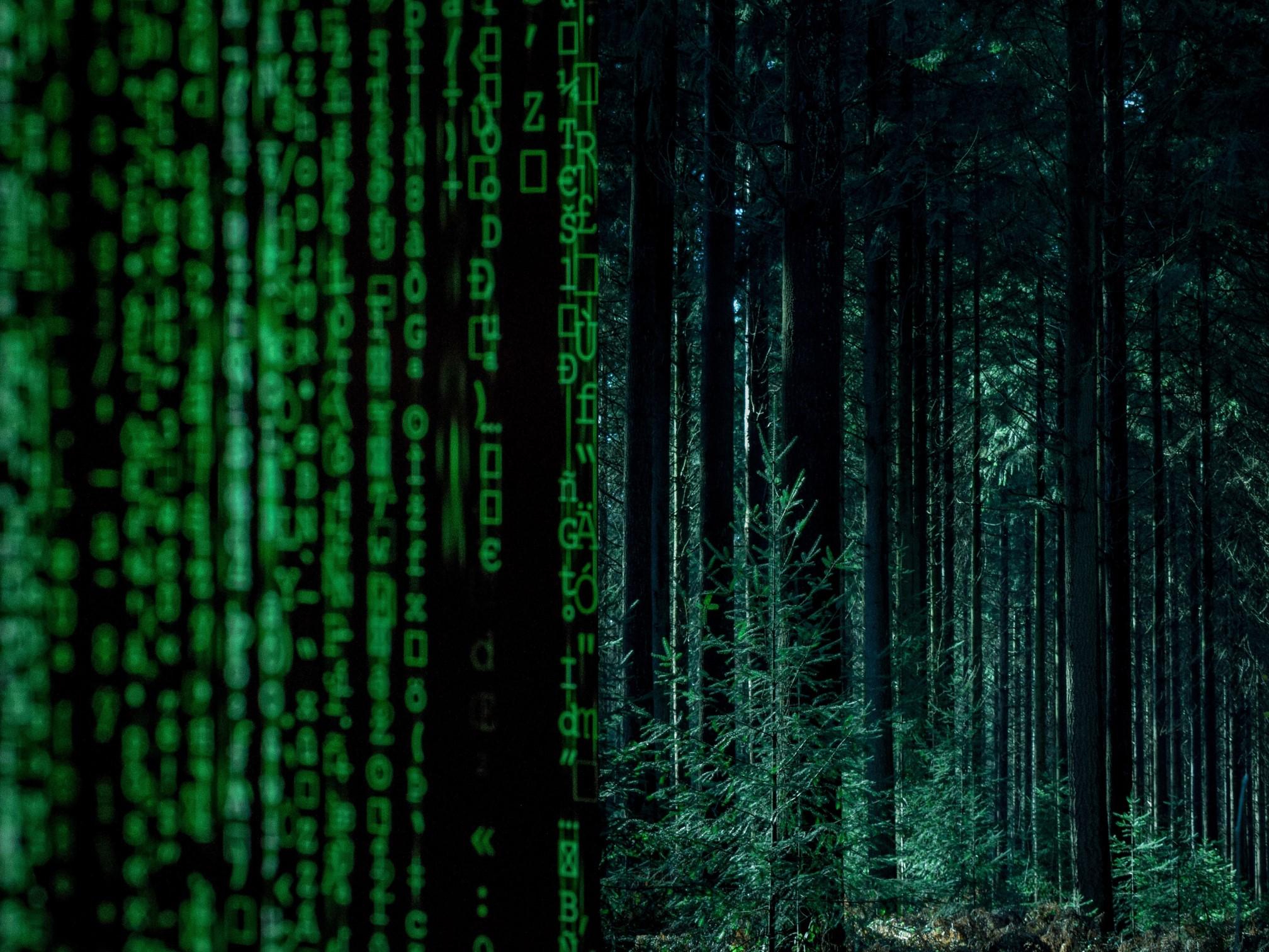 Innovación tecnológica para mejorar el planeta
