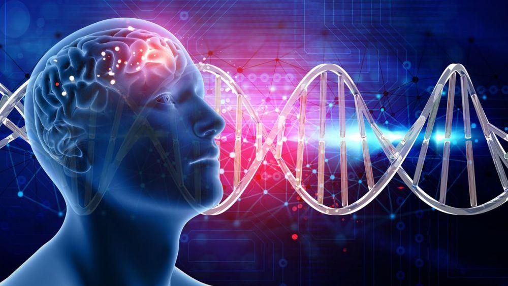 tecnología cerebral